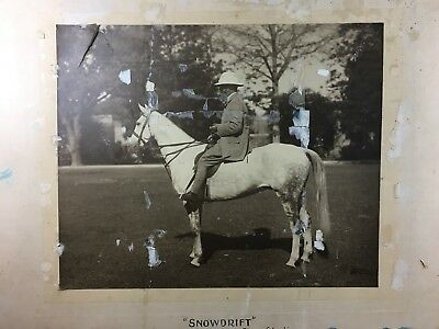 "c.1900 ""SNOWDRIFT"" POLO HORSE SOLD TO MAHARAJA OF PATIALA LARGE MOUNTED PHOTO"