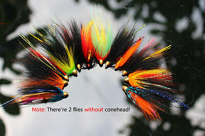 12 pcs Assorted Tube Fly Set For Salmon Trout Steelhead Fly Fishing Flies Lures