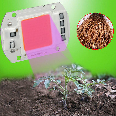 New 20/30/50W Full Spectrum LED COB Chip Grow Light Plant Growing Lamp Bulb