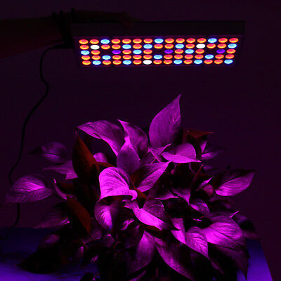 2018 Full Spectrum LED Plant Grow Light Veg Lamp Indoor For Hydroponic Plant Pow