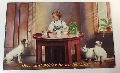 "VINTAGE POSTCARD JAMESTOWN EXPO 1907 BOY & DOG & CATS  at meal time, ""EGG-O-SEE"""