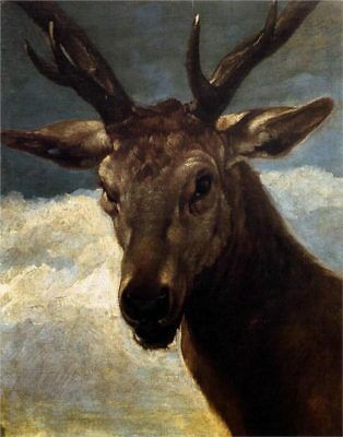 """Handmade Oil Painting repro Diego Velasquez Head of a Stag, 1634 20""""x24"""""""