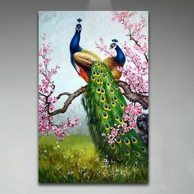 "16x24""Peacock Art Paint By Number Digital Oil Painting Picture Printed On Canvas"