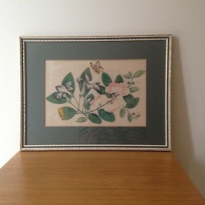 Vintage Original Hand Painted Chinese Botanical Painting on Rice Paper