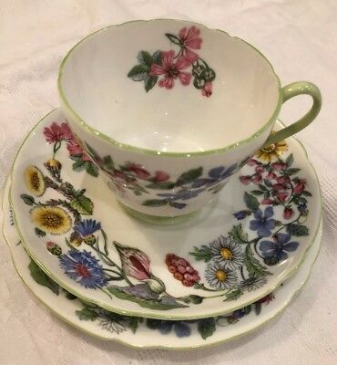 "Shelley Fine Bone China ""Hedgerow"" 3pc Pristine Gorgeous Mixed Botanicals Print"