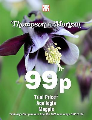 Thompson & Morgan - Flower - Aquilegia Magpie - 50 Seeds