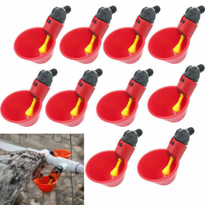 10pcs Poultry Water Drinking Cups- Chicken Hen Plastic Automatic Drinker USA