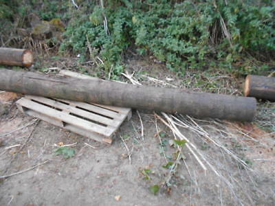 Telegraph Poles - Used Various Lengths 9 / 8 / 6 Foot Collect From Berkhamstead