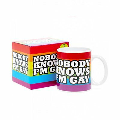Nobody knows I'm Gay.Rainbow Design.Tea/Coffee Cup. Boxed. New. Kitchenware. £7