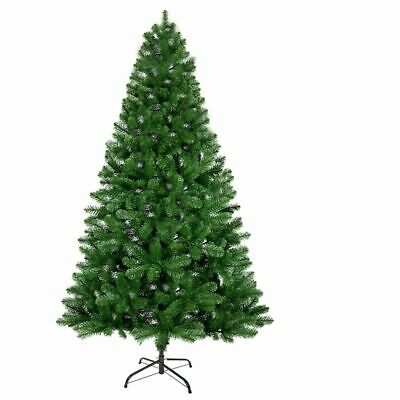 Christmas Tree Xmas Colorado Spruce Pine Green 4ft 5ft 6ft 7ft Free UK Delivery