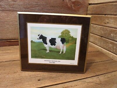 Vintage RARE HOLSTEIN-FRIESIAN  COW True Type On Wood Plaque! - Beautiful Cow!