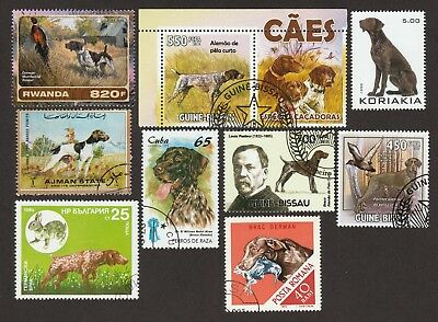 GERMAN SHORTHAIRED POINTER ** Int'l Dog Stamp Collection ** Unique Gift Idea*