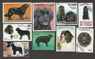 NEWFOUNDLAND ** Int'l Dog Stamp Collection ** Great Gift Idea*