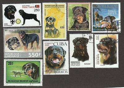 ROTTWEILER ** Int'l Dog Postage Stamp Collection **Great Gift Idea**