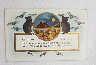 Antique Embossed Postcard Halloween Black Cats~Date Error Oct 30th~1916 Postmark