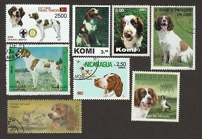 BRITTANY SPANIEL ** Int'l Dog Postage Stamp Collection ** Unique Gift Idea **
