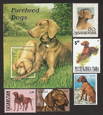 VIZSLA ** Int'l Dog Postage Stamp Collection ** Great Gift Idea **