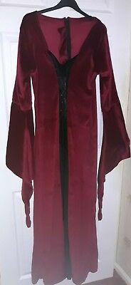 Beautiful Medieval Dress Pagan Wicca hand fasting