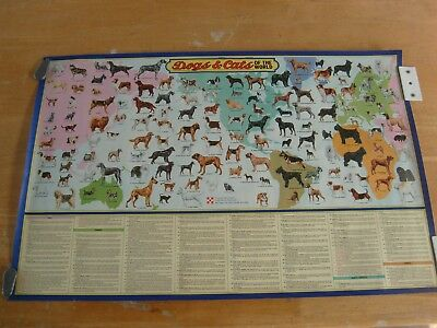 ralston purina poster dogs and cats of the world vintage 1973