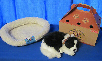 Perfect Petzzz Black and White Breathing Border Collie with Box and Bed Works