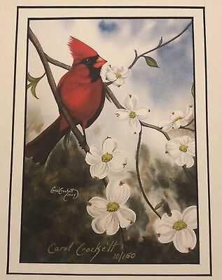 Carol Crockett Signed & Numbered Red Cardinal on Dogwood Print - Audubon - Birds