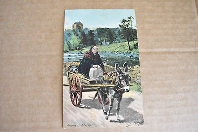 Early 1900s Lady On Donkey & Cart  Post Card