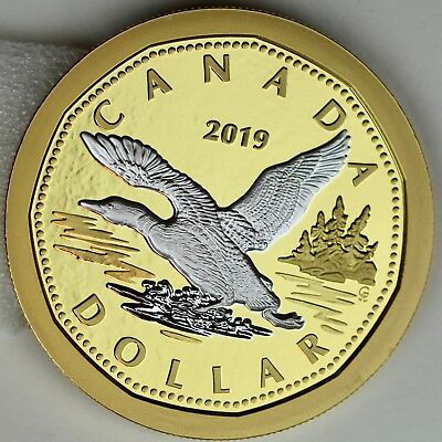 2019 Big Coin Series: Flying Loon Dollar, 5 oz. Pure Silver Reverse-Gold Plating