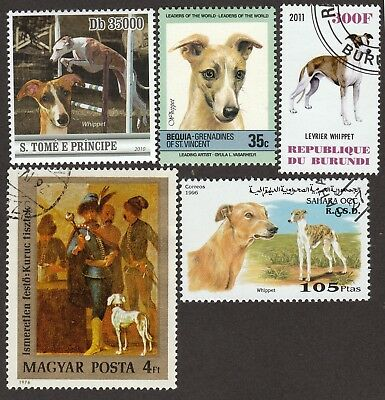 WHIPPET ** Int'l Dog Postage Stamp Collection**Unique Gift Idea**