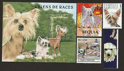 CHINESE CRESTED ** Int'l Dog Postage Stamp Collection ** Great Gift Idea **