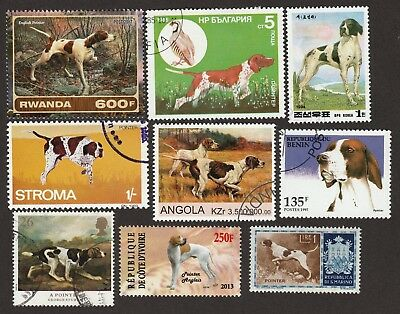ENGLISH POINTER ** Int'l Dog Postage Stamp Collection ** Great Gift Idea **