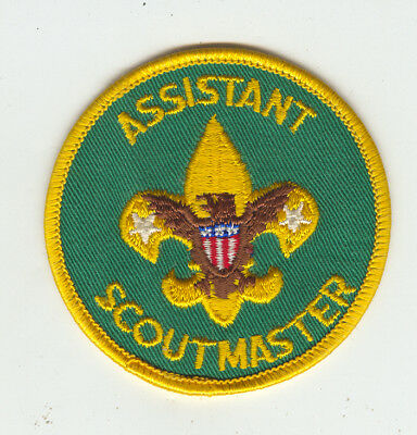 MINT Older Boy Scout Assistant Scoutmaster Patch