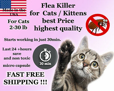100 Instant Flea Killer for Cats / Kittens 2-30lb 15mg + 1 FREE month CONTROL