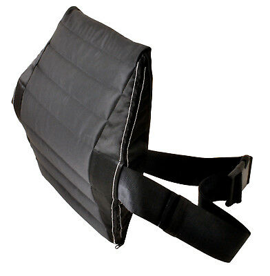 CarRest back cushion