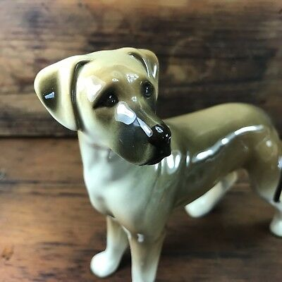 Stunning Antique Vintage Pottery Labrador Made In England Staffordshire?