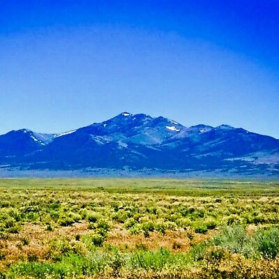20 ACRE NEVADA RANCH-Perfect ranch land for your family! Nevada near Ut ID