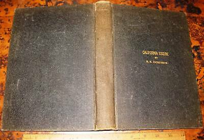 FAUNA OF MARTINEZ EOCENE OF CALIFORNIA by Dickerson 1914 Fossils Tejon Geology