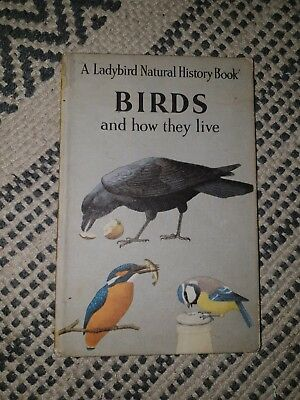 a ladybird natural history book birds and how they live. Vintage children book
