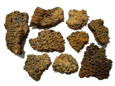 Nine Rare Celtic Chain Mail Armor Fragments From A Celtic Warrior Accountrement!