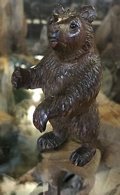 "Beautiful Antique Vintage Hand Carving of a Black Forest Swiss Bear 4.5"" tall"