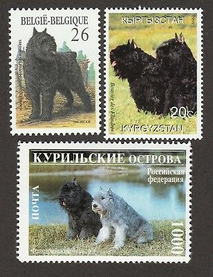 BOUVIER DES FLANDRES **Int'l Dog Stamp Collection  ** Uniqe Gift Idea **