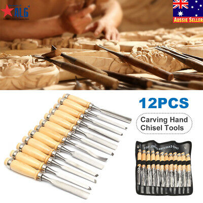 12Pcs Wood Carving Hand Chisel Tool Set Woodworking Professional Craft Gouges
