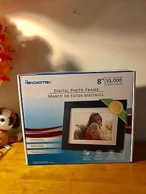 Pandigital Digital Photo Frame Beautiful LCD Screen 8 Inch 10,000 Images NEW
