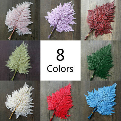 Dried Ferns Plant Leaves Preserved Flowers Dried Ferns Mothers 35cm 10Pcs/Set