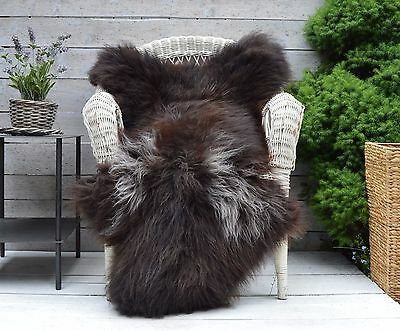 Unique Sheepskin Rug, Throw, Blanket, Very Rare Breed Brown with White - Size XL