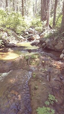 """FORD POINT PLACER #1"" CAMC#0318302 20 acre gold mining claim. Placer County CA."