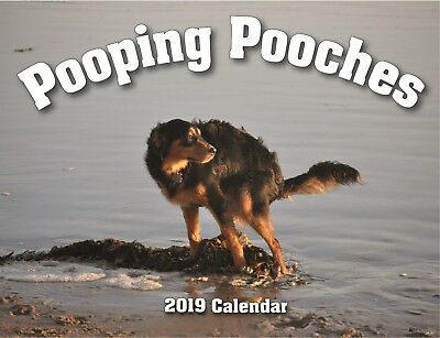 2019 Pooping Pooches White Elephant Gag Gift Calendar, New