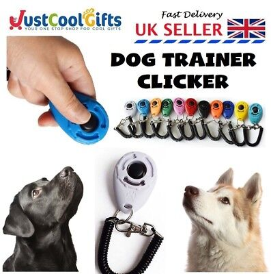 Dog Clicker Pet Trainer Teaching Training Tool For Dogs Clicking Key Ring UK
