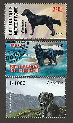 FLAT-COATED RETRIEVER ** Int'l Dog Postage Stamp Collection **Great Gift Idea**