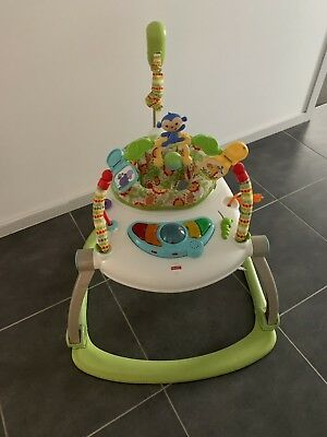 Fisher Price Jumper Excellent Used Condition