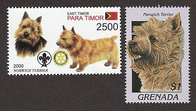 NORWICH TERRIER ** Int'l Dog Stamp Collection ** Great Gift Idea*
